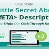 Meta Description Nasıl Yazılmalı?