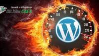 Htaccess ile WordPress Site Hızlandırma