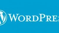 WordPress Veritabanı Nasıl Yedeklenir?