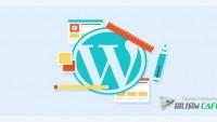 WordPress Kullanıcılarının Yapmaması Gereken Hatalar