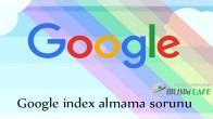 Google İndex Sorunu Var mı?
